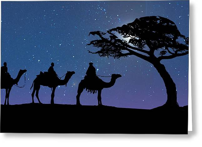 Three Kings Greeting Card by Schwartz
