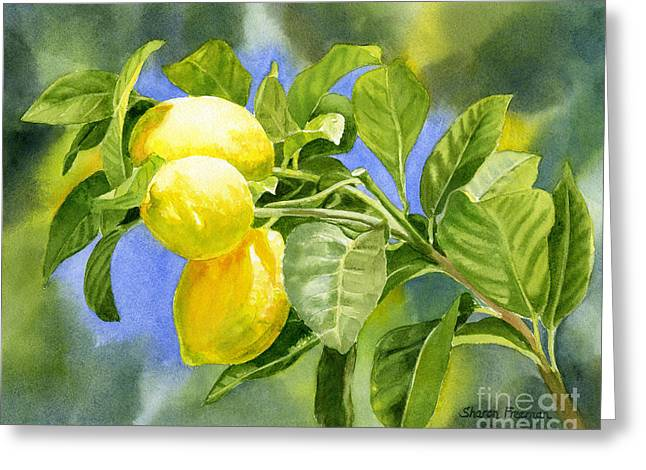 Lemon Art Paintings Greeting Cards - Three Lemons Greeting Card by Sharon Freeman