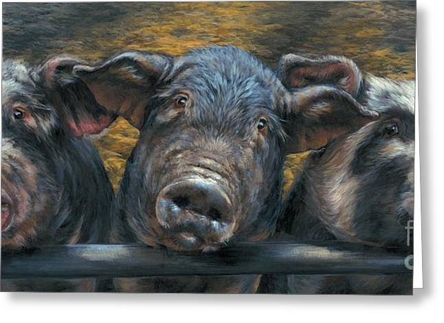 Recently Sold -  - Lioness Greeting Cards - Three Little Piglets Greeting Card by Dina Earl