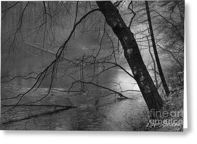 Wildlife Refuge. Greeting Cards - Three Mile River Greeting Card by David Gordon