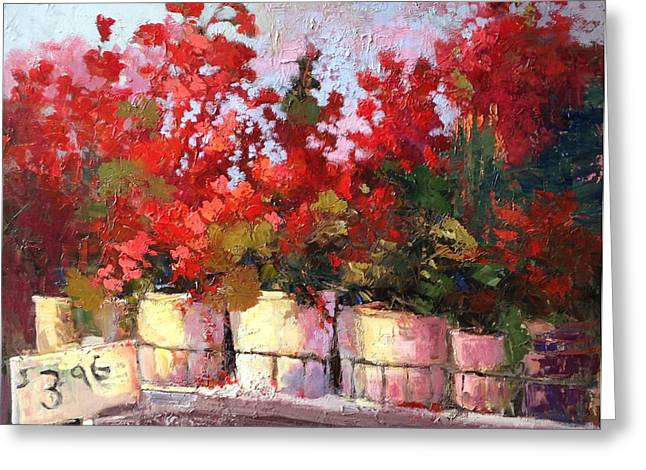 Red Geraniums Greeting Cards - Three Ninety Six Greeting Card by Mary Scott