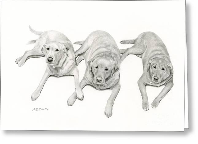 Lab Mix Greeting Cards - Three Of A Kind Greeting Card by Sarah Batalka