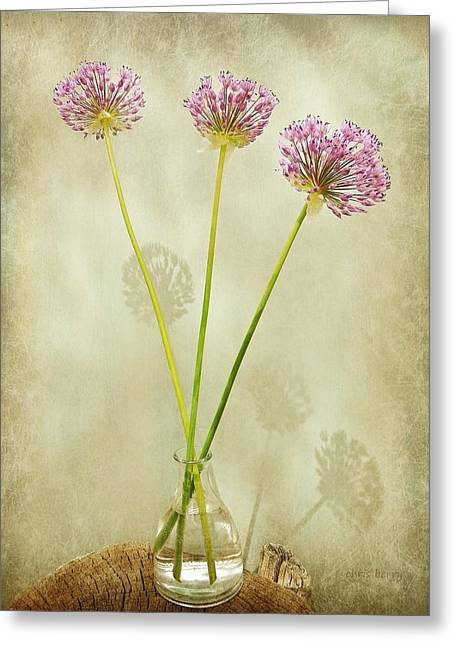 Three Onion Globes Greeting Card by Chris Berry