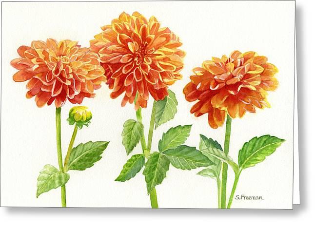 Salmon Paintings Greeting Cards - Three Orange Dahlias Greeting Card by Sharon Freeman