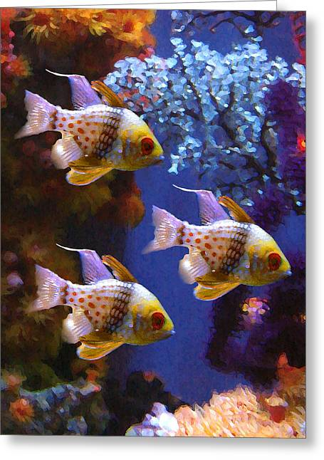Beautiful Fish Greeting Cards - Three Pajama Cardinal Fish Greeting Card by Amy Vangsgard