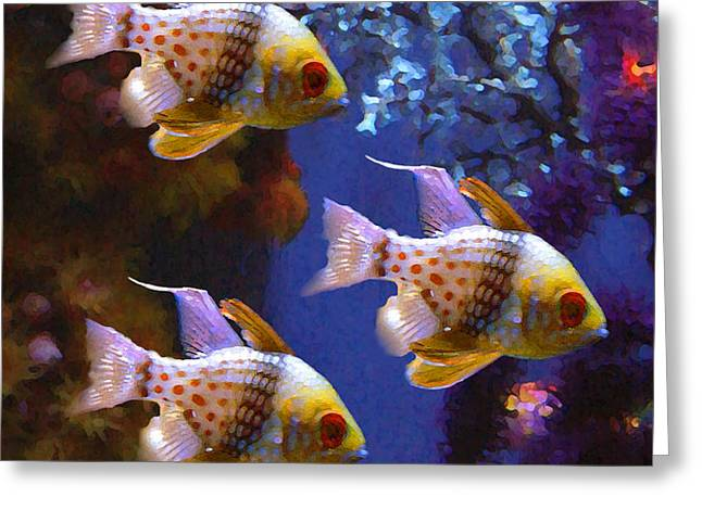 Three Pajama Cardinal Fish Greeting Card by Amy Vangsgard