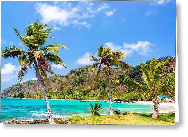 Miel Greeting Cards - Three Palm Trees in Panama Greeting Card by Jess Kraft