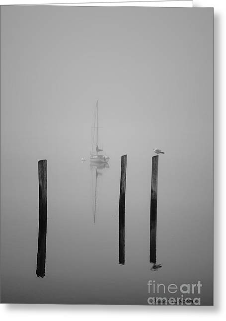 Three Pilings And Sailboat Greeting Card by Dave Gordon