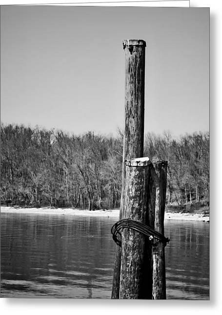 Reflections In River Digital Art Greeting Cards - Three Pilings in b/w Greeting Card by Greg Jackson