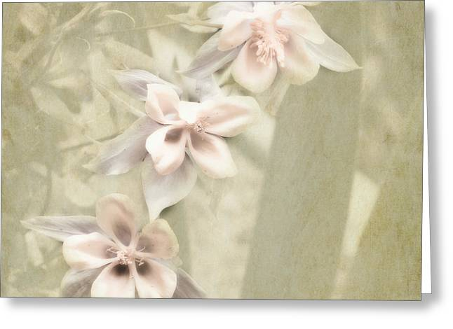 Pink Flower Prints Greeting Cards - Three Pink Blossoms Greeting Card by Bonnie Bruno