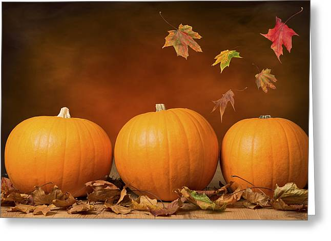 Red Maple Trees Greeting Cards - Three Pumpkins Greeting Card by Amanda And Christopher Elwell