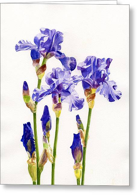 Purple Floral Greeting Cards - Three Purple Irises Greeting Card by Sharon Freeman