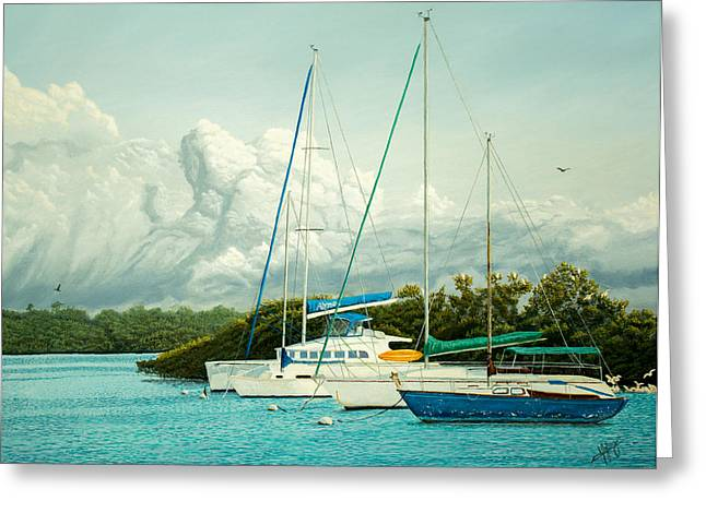 Sea Birds Greeting Cards - Three Sailboats Greeting Card by Manuel Lopez
