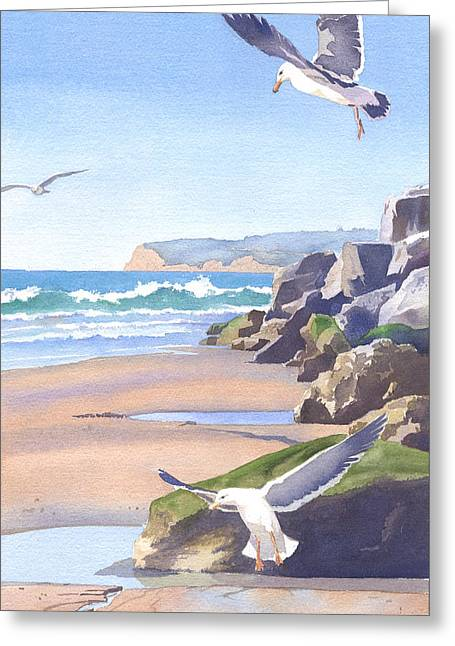 Southern California Beach Greeting Cards - Three Seagulls at Coronado Beach Greeting Card by Mary Helmreich