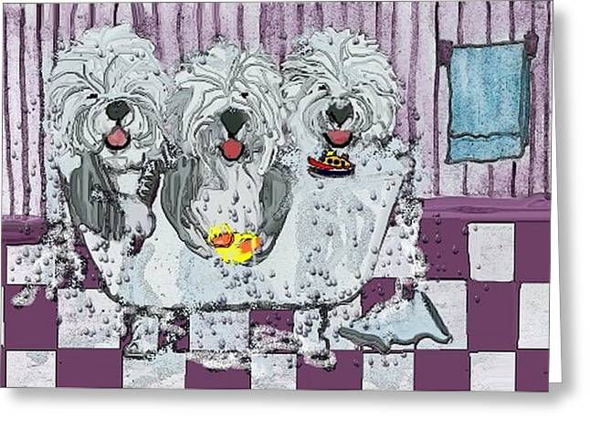 Oes Greeting Cards - Three Sheepdogs in a Tub Greeting Card by Cathy Howard