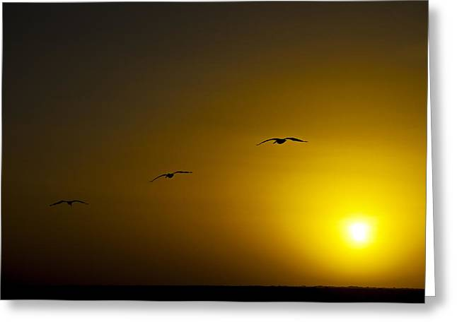 Summer Scene Greeting Cards - Three Silhouettes Greeting Card by Jess Kraft