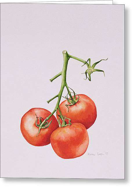 Vines Drawings Greeting Cards - Three Tomatoes on the Vine Greeting Card by Alison Cooper