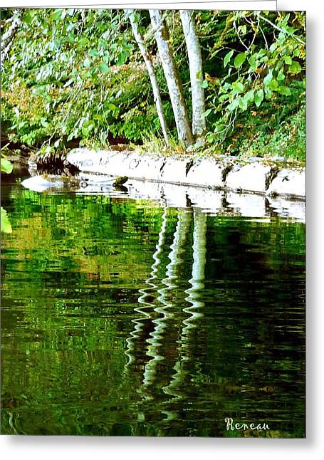 Reflections Of Trees In River Greeting Cards - Stump Art 24 Greeting Card by Sadie Reneau