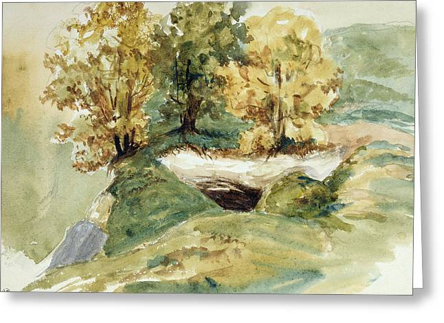 Hills Drawings Greeting Cards - Three trees at the edge of a hill Greeting Card by Ferdinand Victor Eugene Delacroix