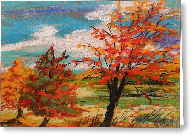 Harvest Time Drawings Greeting Cards - Three Trees Changing Greeting Card by John  Williams