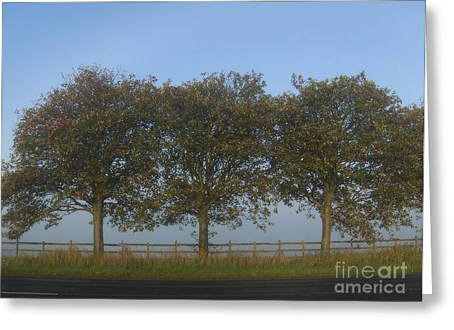 Meadown Greeting Cards - Three Trees Greeting Card by Lesley Jane Smithers