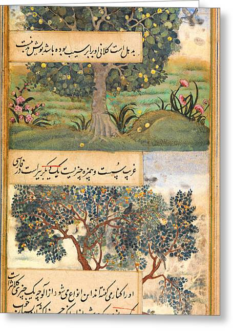 Rosary Greeting Cards - Three Trees of India Greeting Card by Celestial Images