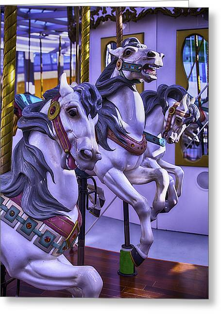 Magical Greeting Cards - Three Wild Horses Greeting Card by Garry Gay