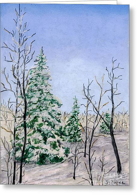 Snowscape Pastels Greeting Cards - Three Winter Evergreens Greeting Card by Ginny Neece
