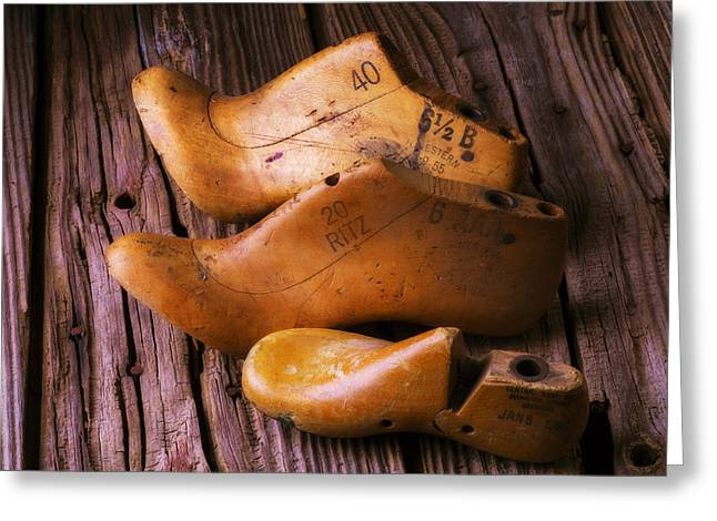 Three Trees Greeting Cards - Three Wooden Shoe Forms Greeting Card by Garry Gay