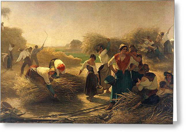 Harvest Photographs Greeting Cards - Threshing Rapeseed In The Fields Of Lille Oil On Canvas Greeting Card by Auguste Joseph Herlin