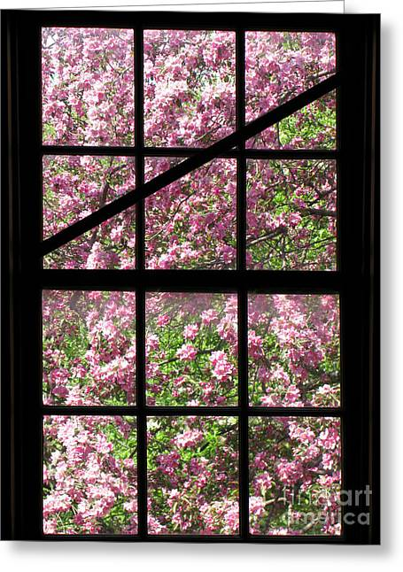 Window Panes Greeting Cards - Through an Old Window Greeting Card by Olivier Le Queinec