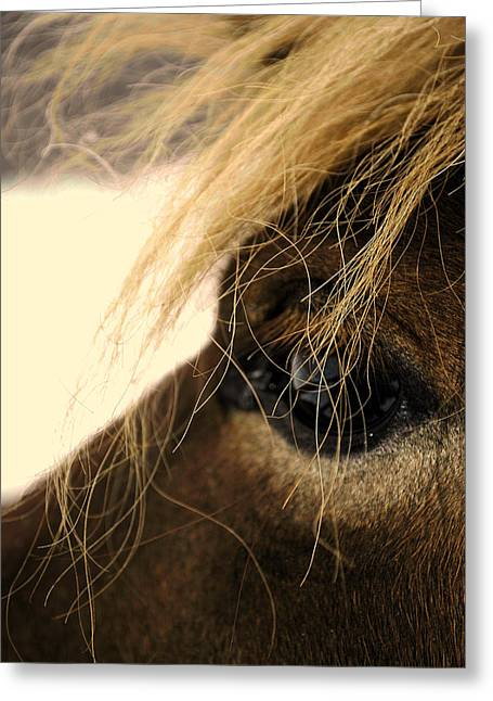 Through Her Eyes Greeting Card by Chastity Hoff