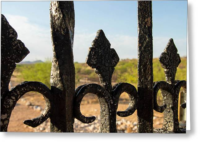 Ambition Greeting Cards - Through the Bars Greeting Card by BJ Halsey