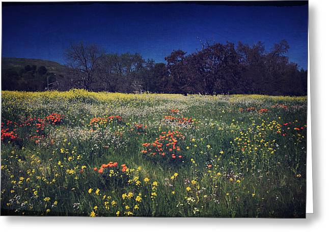 Oak Tree Greeting Cards - Through the Blooming Fields Greeting Card by Laurie Search