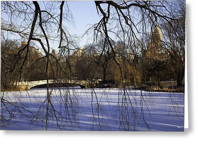 Snowy Day Greeting Cards - Through The Branches 1 - Central Park - NYC Greeting Card by Madeline Ellis