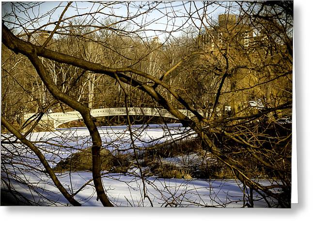 Snowy Day Greeting Cards - Through The Branches 2 - Central Park - NYC Greeting Card by Madeline Ellis