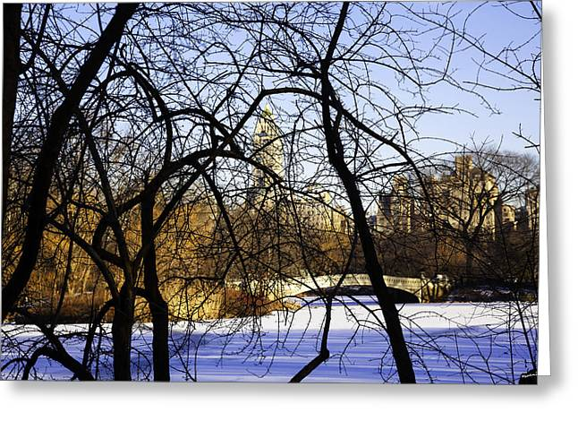 Snowy Day Greeting Cards - Through The Branches 3 - Central Park - NYC Greeting Card by Madeline Ellis