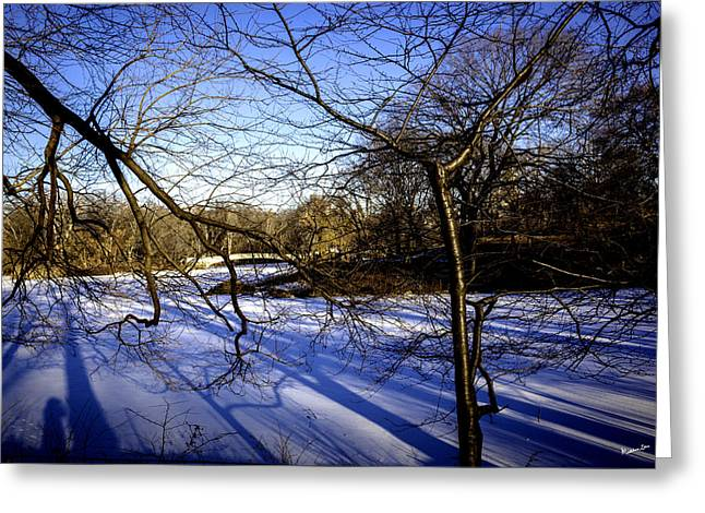 Snowy Day Greeting Cards - Through The Branches 4 - Central Park - NYC Greeting Card by Madeline Ellis