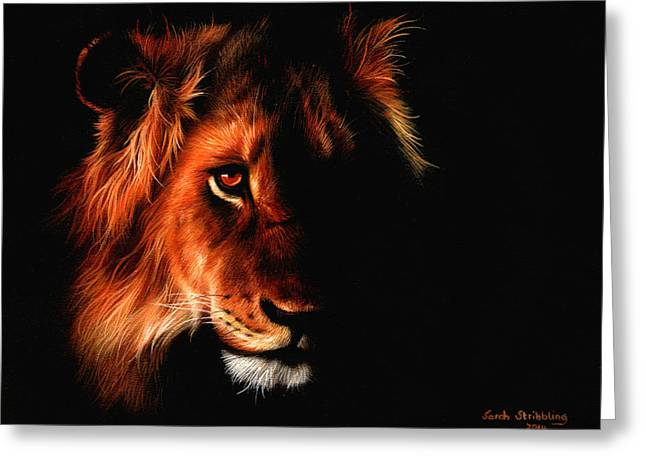 Recently Sold -  - Lioness Greeting Cards - Through the darkness Greeting Card by Sarah Stribbling
