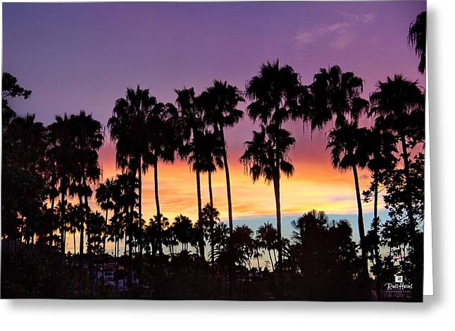 Tennis Club Greeting Cards - Through The Palms Beach and Tennis Club Greeting Card by Russ Harris