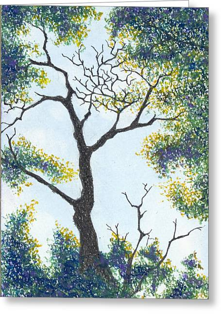 Tranquil Pastels Greeting Cards - Through the Tree - Lake of the Ozarks Greeting Card by Michele Fritz
