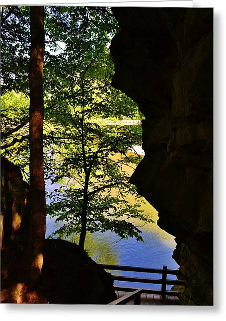 Turkey Run State Park Greeting Cards - Through The Trees Greeting Card by Brent Tindall