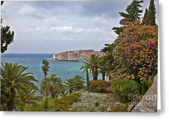 Dubrovnik Greeting Cards - Through the Trees in Dubrovnik Greeting Card by Madeline Ellis