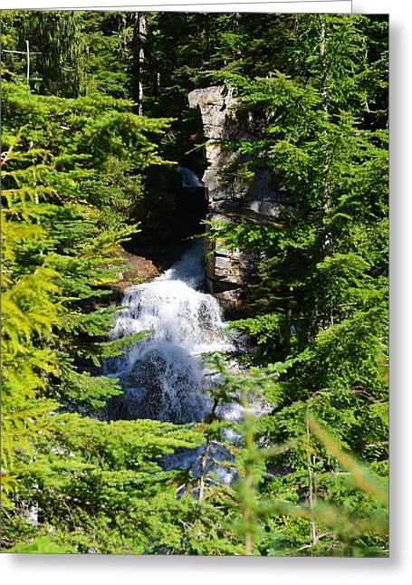 Through The Trees Greeting Card by Randy Giesbrecht