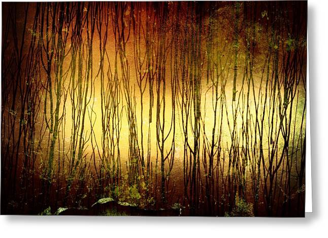 Ghostly Tears Greeting Cards - Through the Trees Greeting Card by Richard Reeve