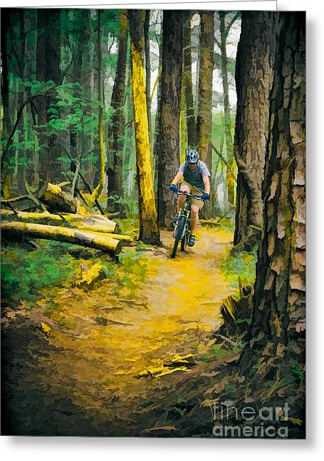 Photographers Greensboro Greeting Cards - Through the Woods Greeting Card by Dan Carmichael