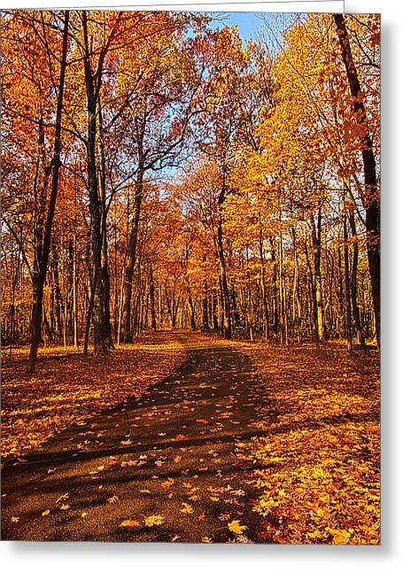 Hike Greeting Cards - Through The Woods We Go Greeting Card by Phil Koch