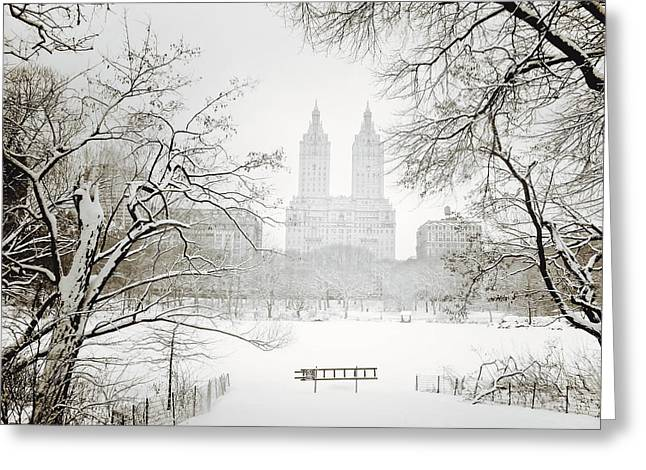 Pretty Photographs Greeting Cards - Through Winter Trees - Central Park - New York City Greeting Card by Vivienne Gucwa