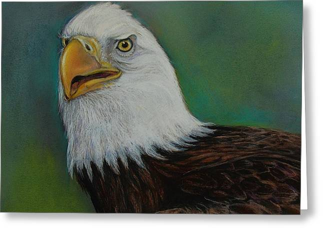 Bald Eagle Pastels Greeting Cards - Thunder Greeting Card by Jean Cormier