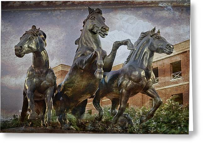 Mascots Greeting Cards - Thundering Mustangs Greeting Card by Joan Carroll